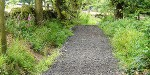 Badger Survey and Mitigation for Resurfacing of 500m of Bridleway near Matlock, Derbyshire